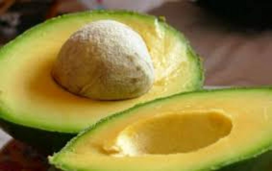 Argentina opens market for avocados from Brazil