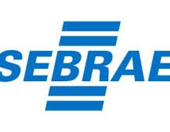 Brasil deve registrar recorde de novos negócios em 2020, diz Sebrae-SP